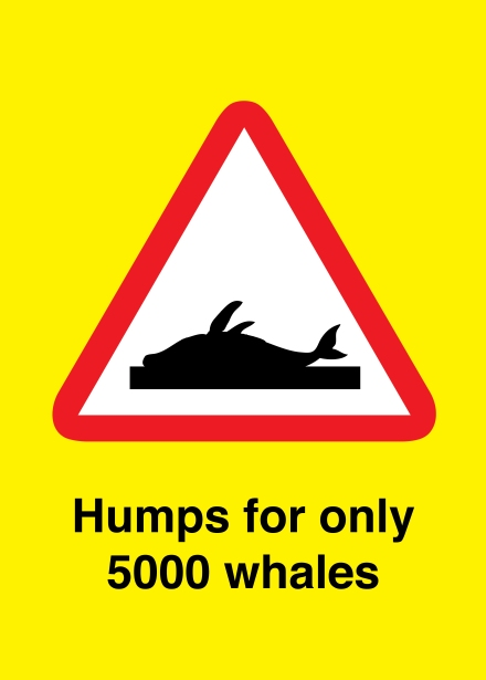 Humps for only 5000 whales
