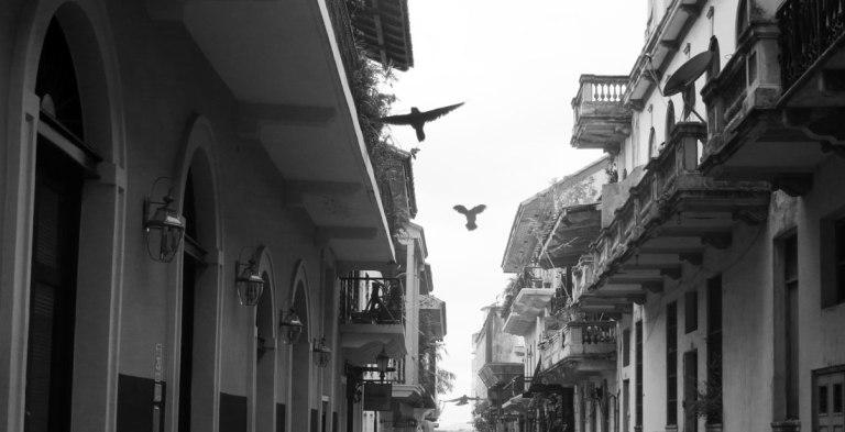 Panama-August-2015-16