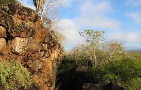 Galapagos-2017-19