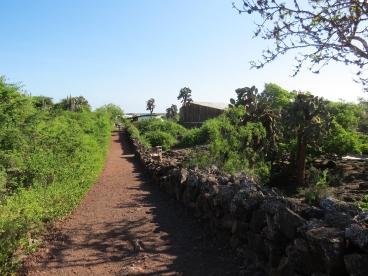 Galapagos-2017-6